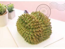 Durian cake-01