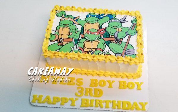 忍者龜蛋糕(食用打印)