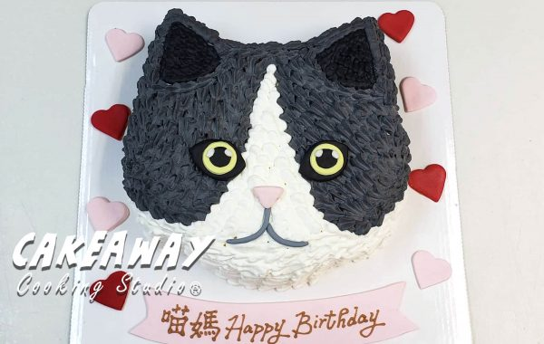 貓貓(自來圖片)蛋糕